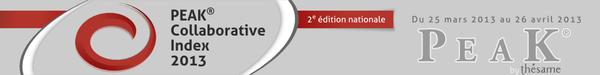 2e édition nationale du PEAK Collaborative Index 2013